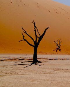 Biluthyrning & hyrbil i Windhoek