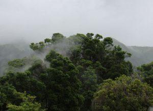 Boka hyrbil & biluthyrning på Terceira
