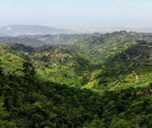 Billig biluthyrning & hyrbil i Jamaica
