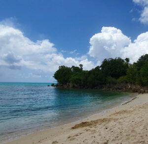 Billig biluthyrning & hyrbil i Guadeloupe